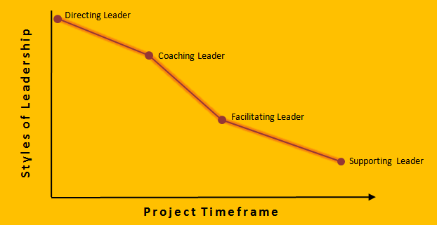 PMBOK manage project team process