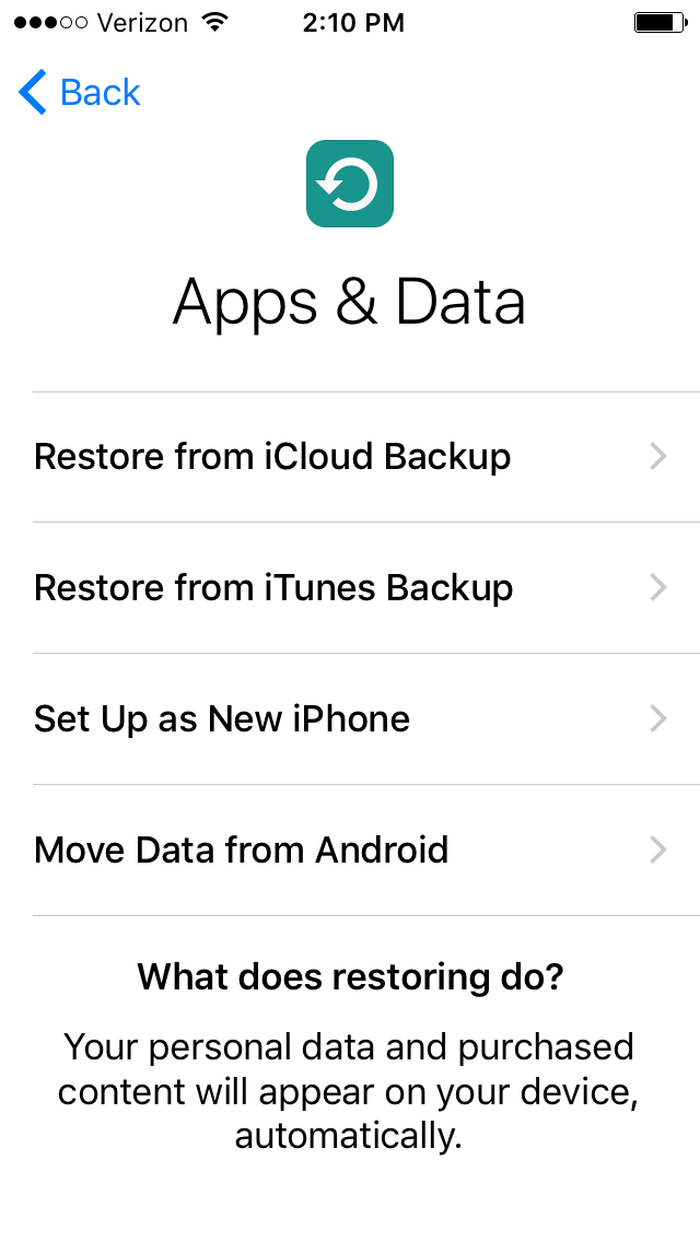 iPhone restore options