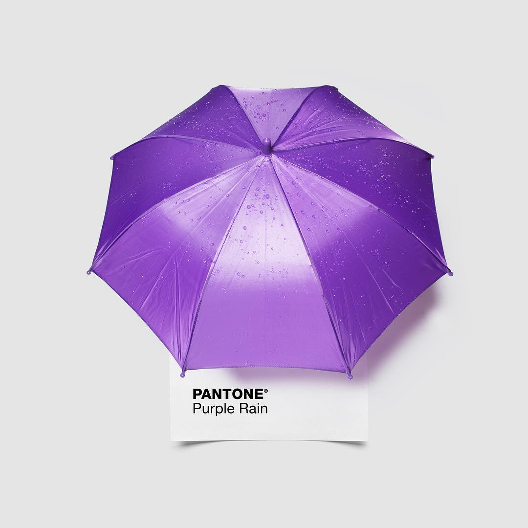 "In Minneapolis, it seems like everyone has a Prince story. The first time we saw him was at Paisley Park in '09, where he called George Clinton on stage by saying, ""Where you at, Snuffleupagus?!"" What's your favorite #Prince story? #RIPPrince #RestInPurple #PurpleRain #PantonePairings"