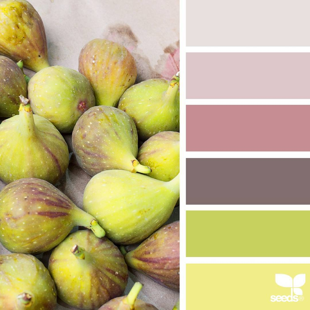 today's inspiration image for { market hues } is by @rotblaugelb ... thank you, Julia, for another wonderful #SeedsColor image share!